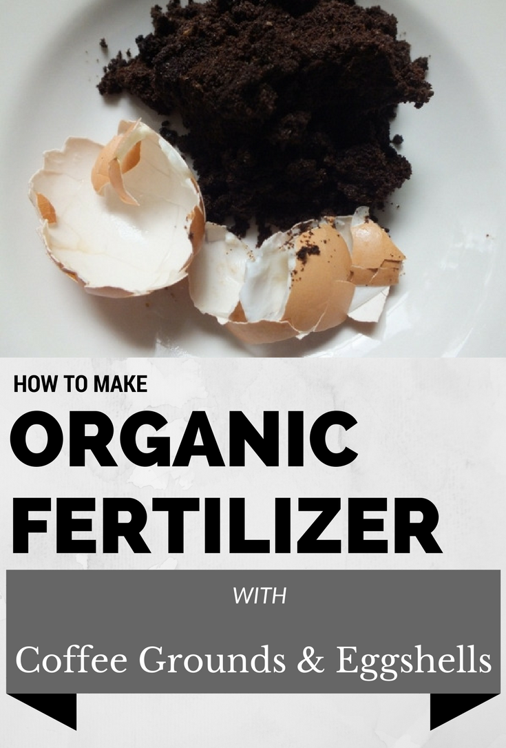 How to make organic fertilizer with coffee grounds and eggshells 1 Coffee Groundsas Fertilizer